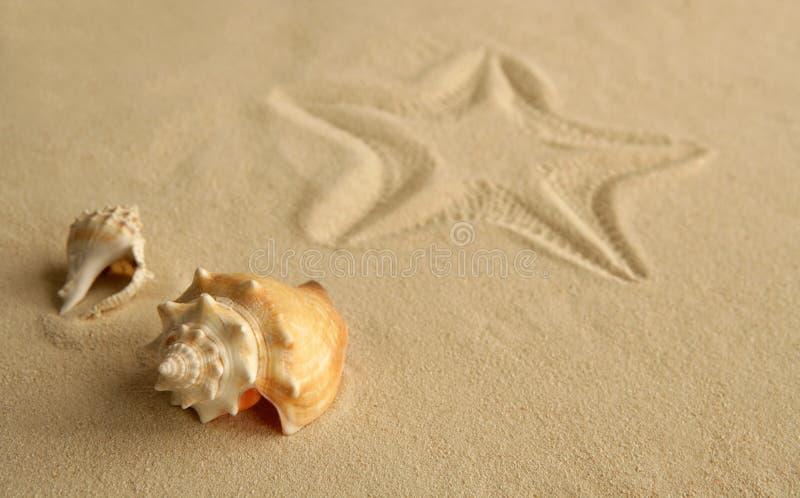 Pegada dos Starfish sobre a areia do Cararibe foto de stock royalty free