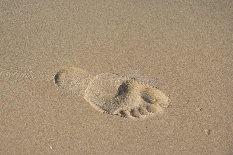 Pegada na foto da praia Imagem bonita, fundo, wal foto de stock