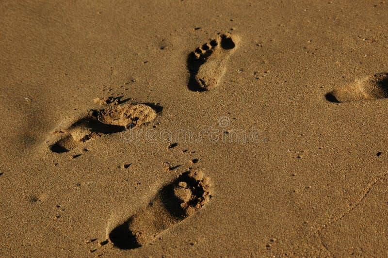 Download Pegadas imagem de stock. Imagem de areia, barbados, praia - 113467