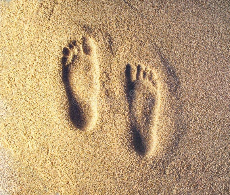 Download Pegadas foto de stock. Imagem de pés, conduzir, cópias, praia - 64054