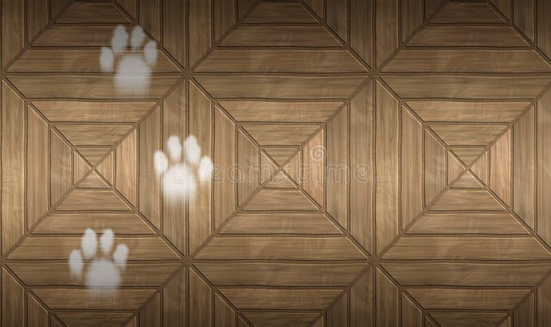 Pegadas brancas do gato na superfície de madeira foto de stock royalty free