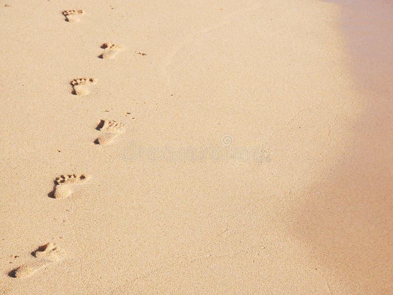 Pegadas de Sandy imagens de stock royalty free