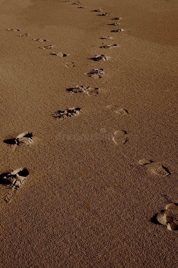 Pegadas do cruzamento na areia fotos de stock royalty free