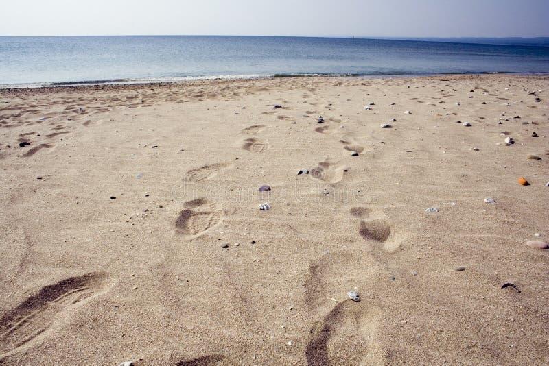 Pegadas em uma praia. foto de stock royalty free