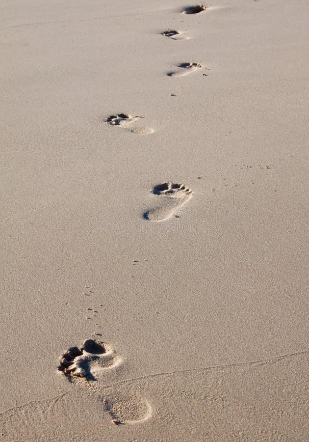 Pegadas em uma praia imagens de stock royalty free