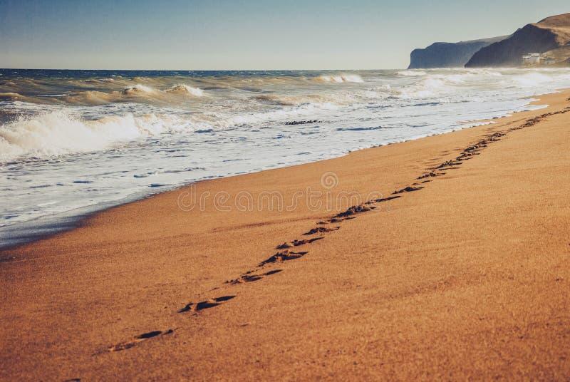 Pegadas em uma praia arenosa fotos de stock