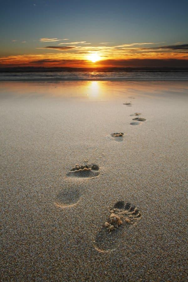 Pegadas na areia na praia imagem de stock royalty free