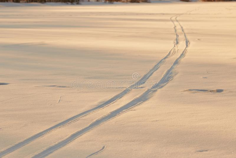 Pegadas na neve na hora dourada imagem de stock royalty free