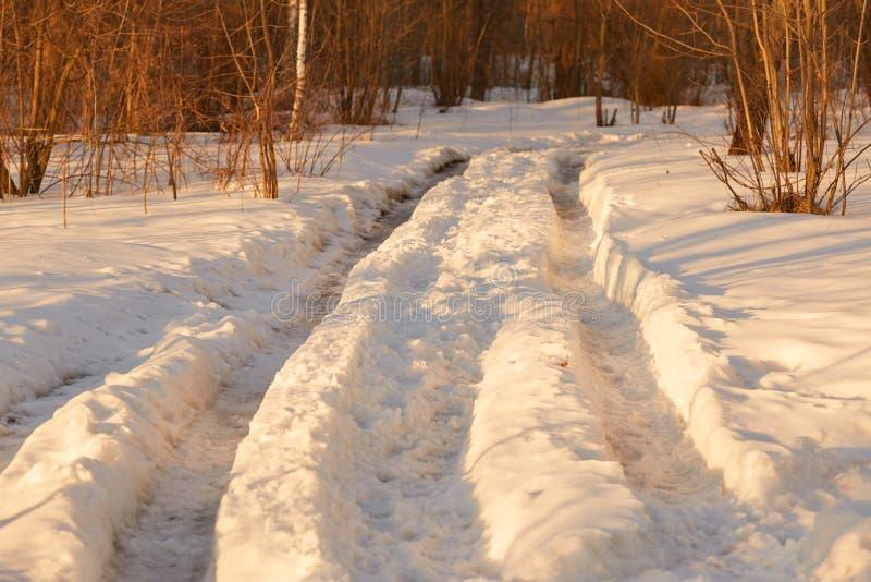 Pegadas na neve na hora dourada imagem de stock
