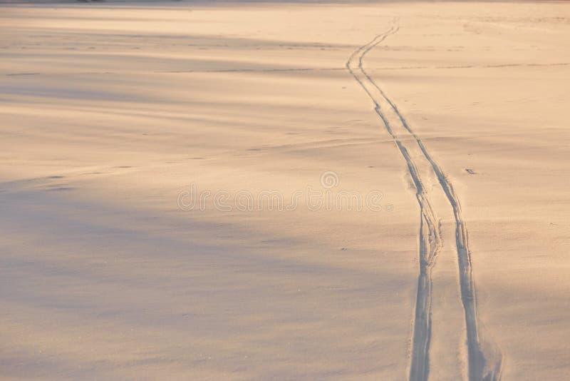 Pegadas na neve na hora dourada fotos de stock royalty free