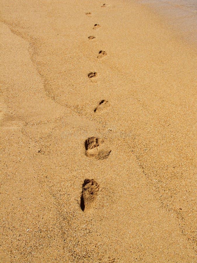 Download Pegadas na praia foto de stock. Imagem de lazer, relaxe - 16868660