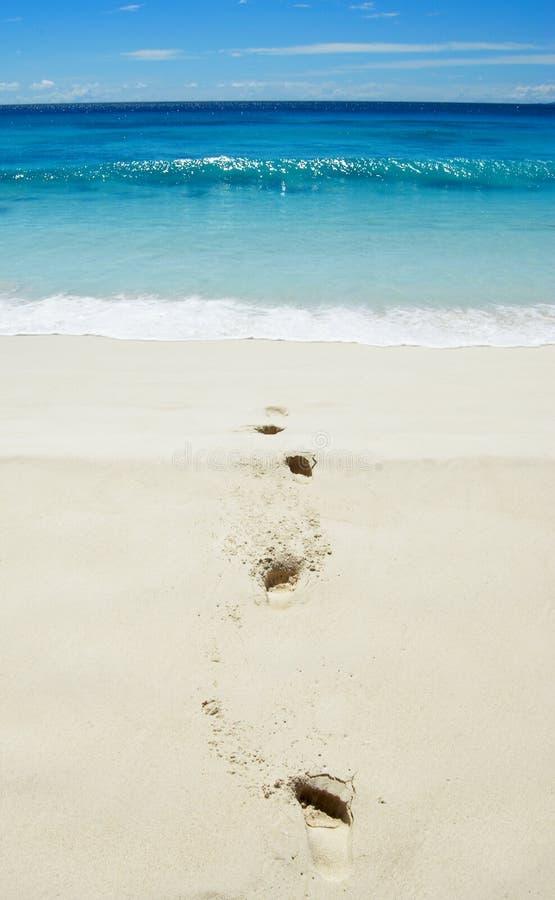 Pegadas na praia fotografia de stock royalty free