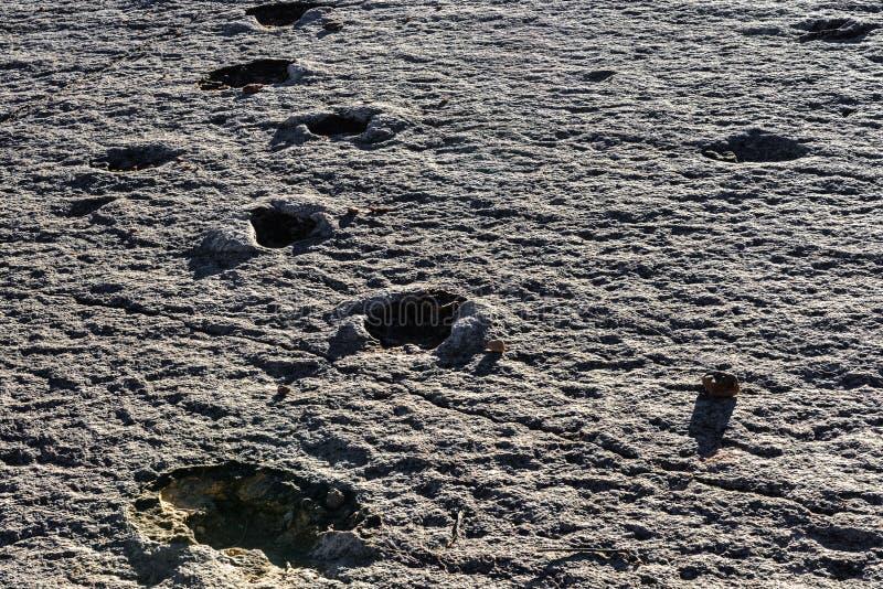 Pegadas reais do dinossauro, parque nacional de Torotoro, Bolívia fotografia de stock