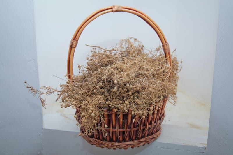 Peganum harmala herb, medicinal herbs, herbal plants, medicinal plants Dried Harmal on display in the basket Dried Peganum photographie stock libre de droits