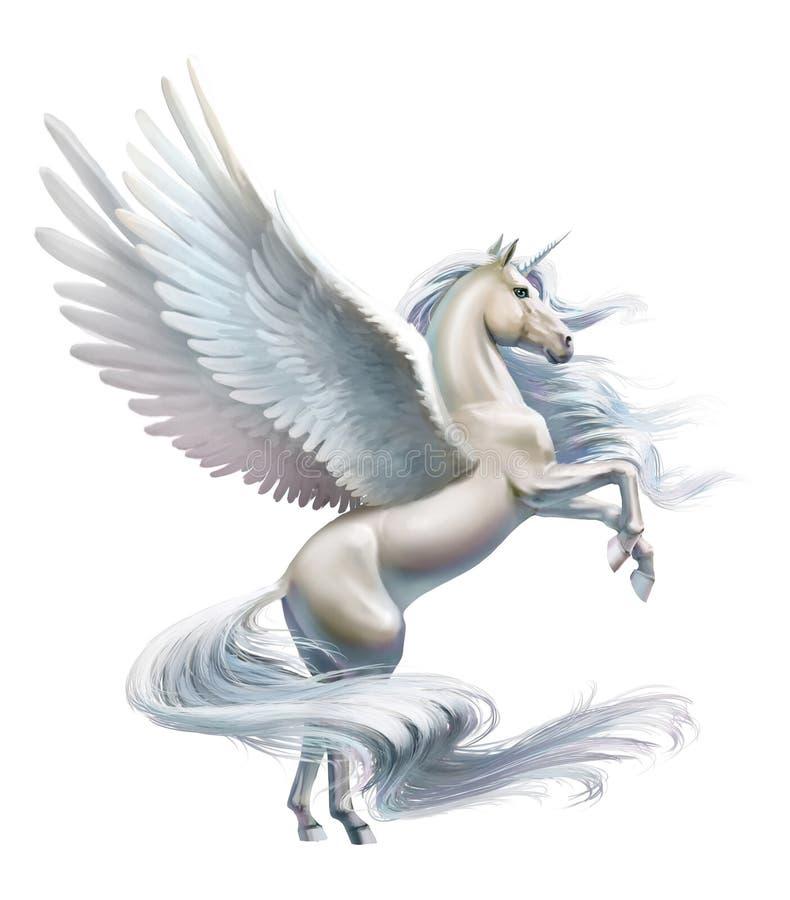 Pegasus, κινηματογράφηση σε πρώτο πλάνο, που απομονώνεται στο λευκό διανυσματική απεικόνιση