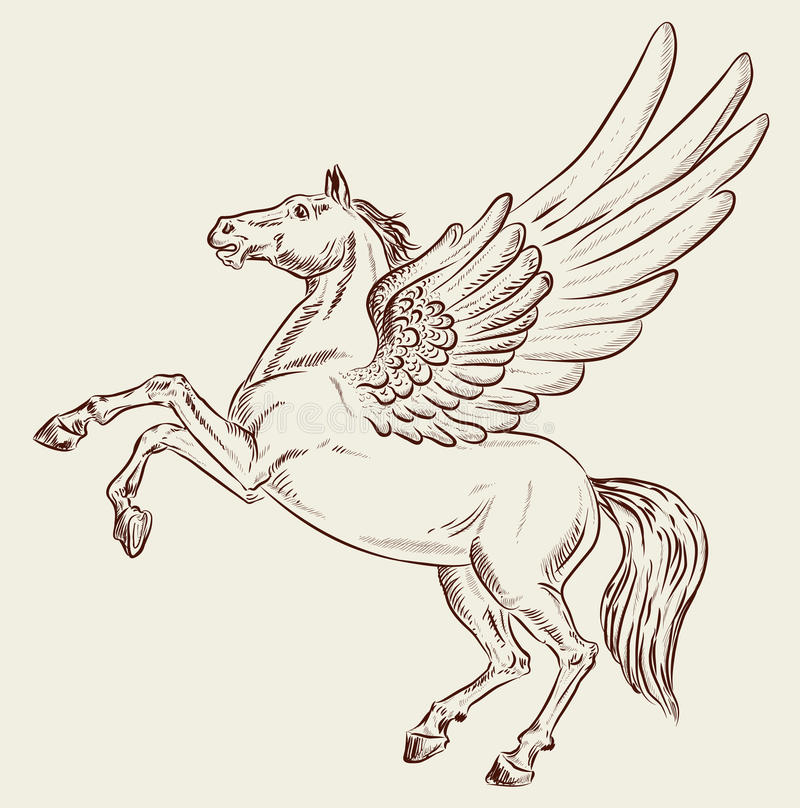 Download Pegasus stock vector. Image of hind, legendary, hoof - 14530336
