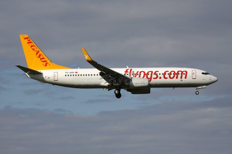 Pegasus Boeing 737-800 royalty-vrije stock foto's