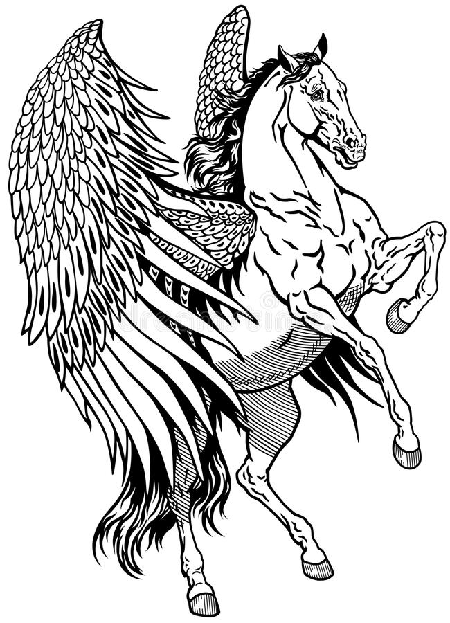 Pegasus branco ilustração royalty free