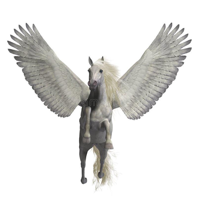 Pegasus branco no branco ilustração stock