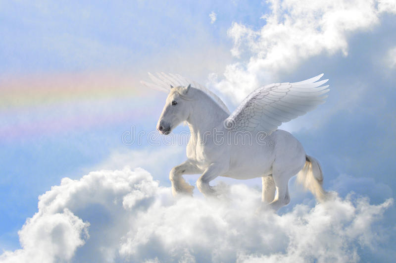 Pegasus in the clouds. Pegasus horse in the clouds