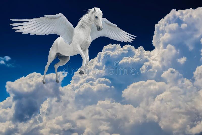Pegasus gevleugeld legendarisch wit paard die met uitgespreide vleugels in bewolkte hemel vliegen royalty-vrije stock fotografie