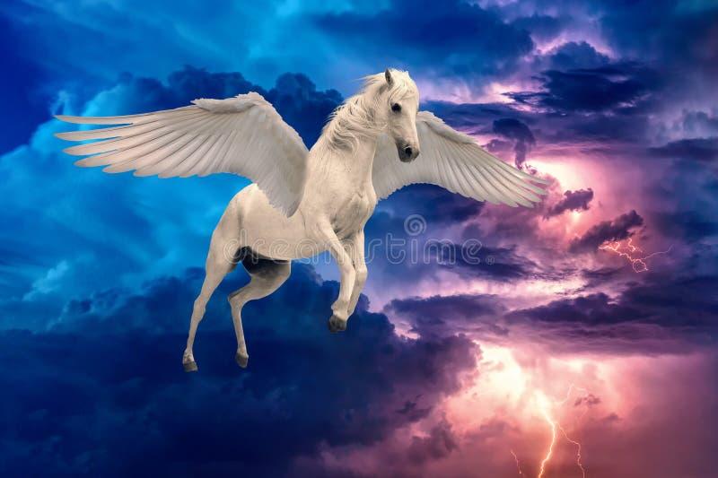 Pegasus gevleugeld legendarisch wit paard die met uitgespreide vleugels vliegen stock fotografie
