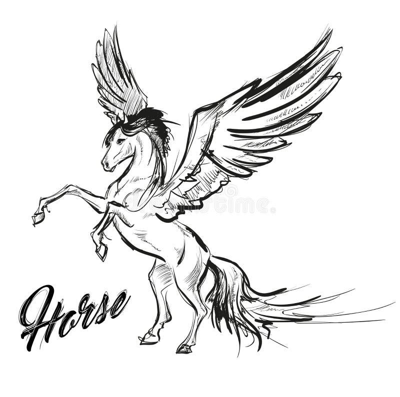 Pegasus Grieks mythologisch schepsel stock illustratie