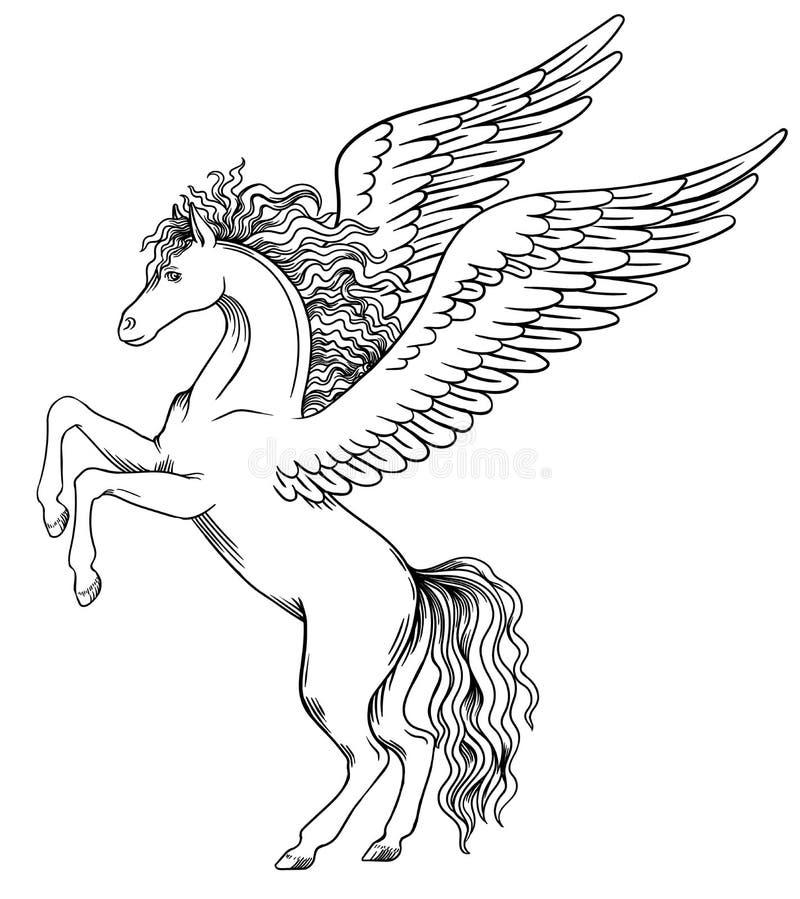 pegasus O objeto para a brasão ilustração do vetor