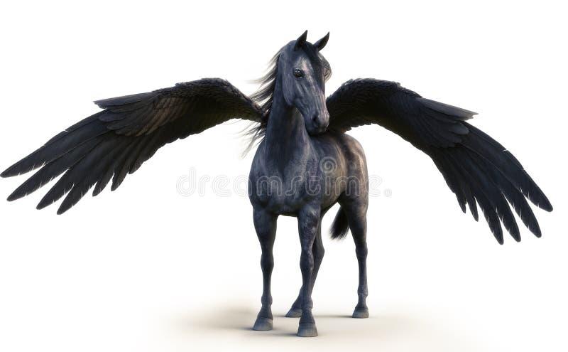 Pegasus preto mítico que levanta no branco isolou o fundo ilustração do vetor