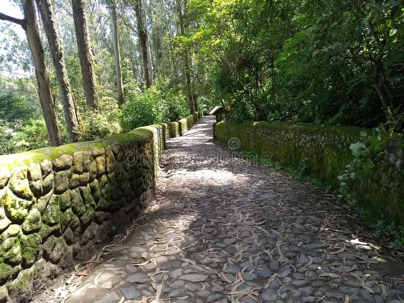 Peguche path stock image