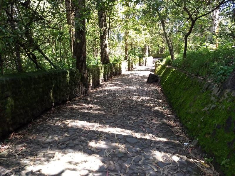 Peguche ` s石头走道 免版税库存图片