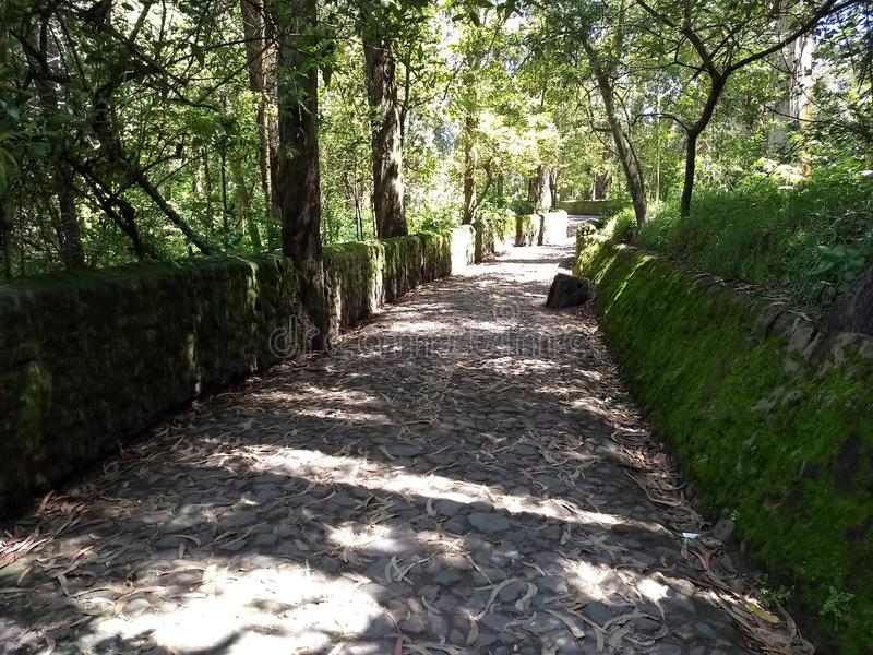 Peguche`s Stone walkway royalty free stock images