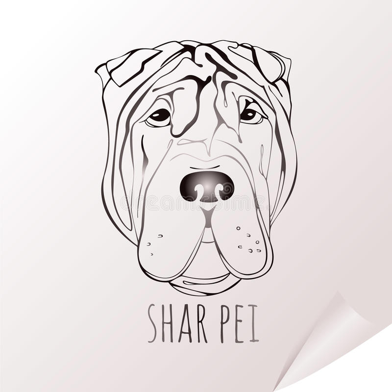 Pei shar de la cabeza de perro libre illustration