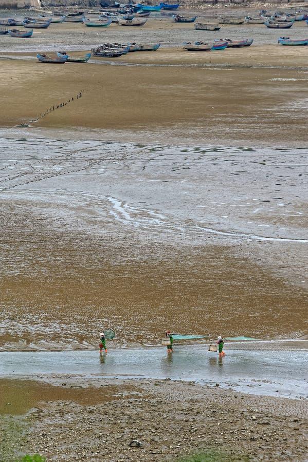 Peigne de plage - paysage de Xiapu images libres de droits