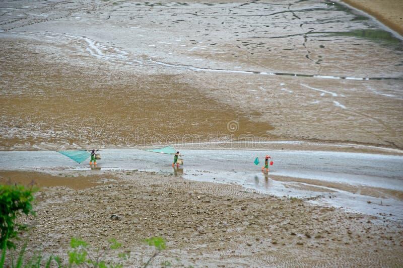 Peigne de plage - paysage de Xiapu photos libres de droits
