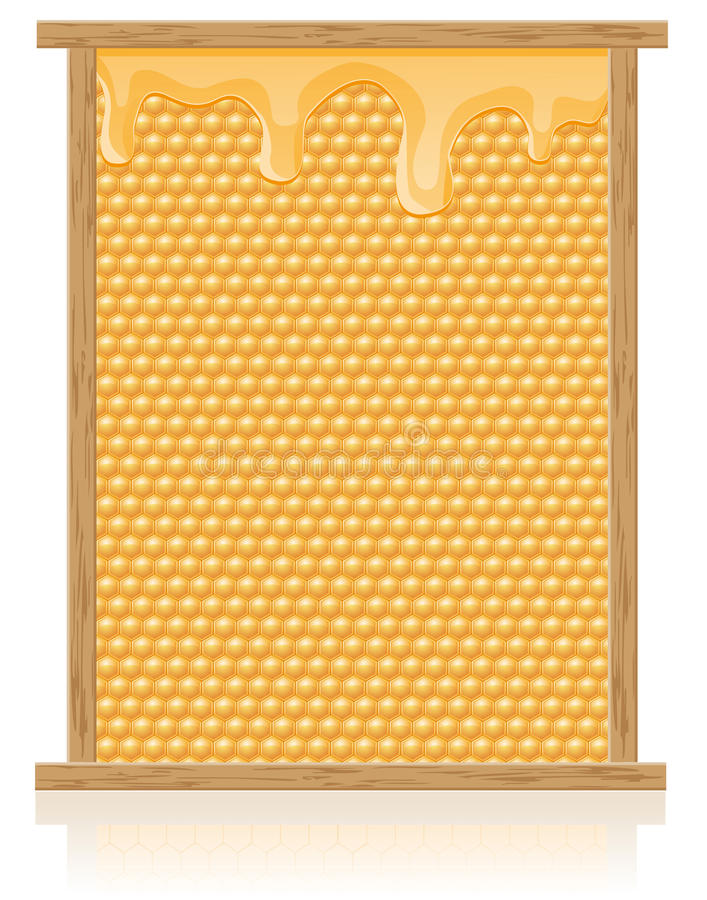 Peine de la miel en la ilustración del vector del marco ilustración del vector