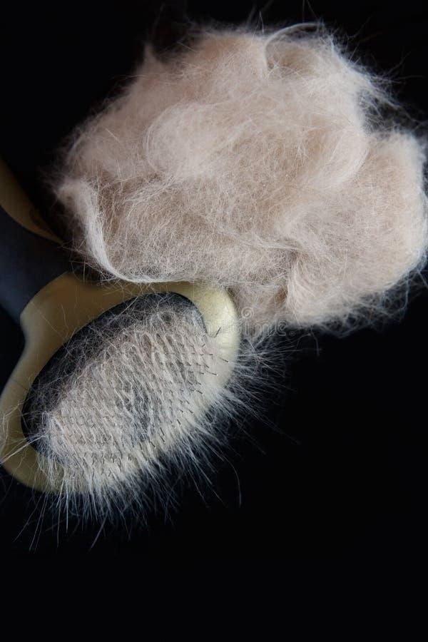 Peine para los animales y un penacho de lanas en un fondo negro fotografía de archivo libre de regalías