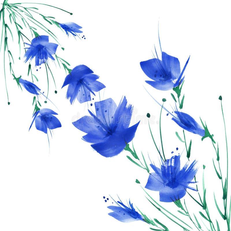 Peinture d'aquarelle Un bouquet des fleurs des pavots bleus, wildflowers Illustration florale d'aquarelle tir?e par la main, logo illustration libre de droits