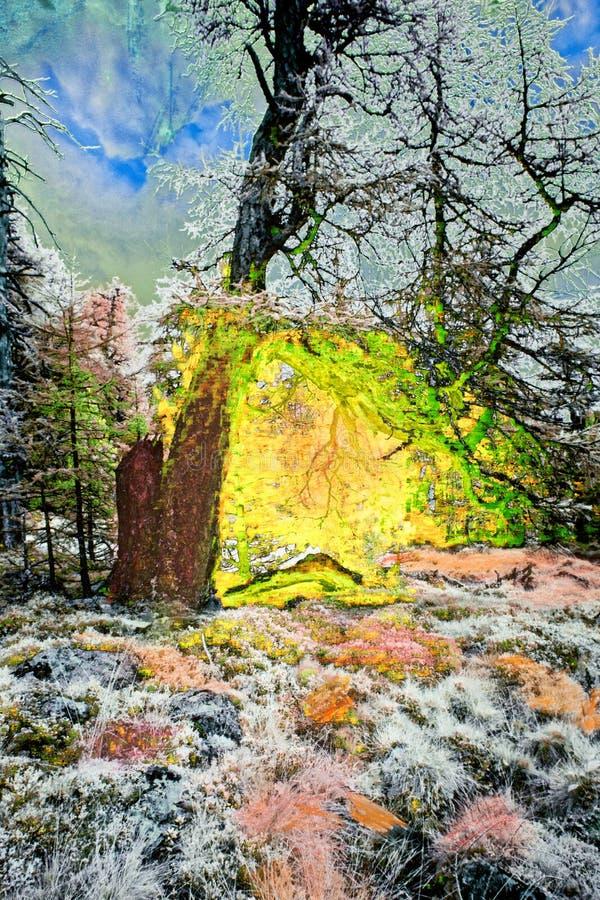 Peinture d'arbre enchanté dans le paysage images libres de droits