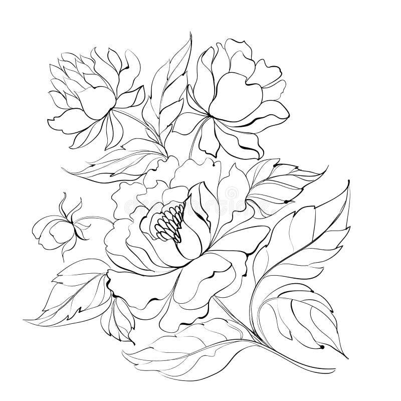 Peinture d'encre de pivoine. illustration de vecteur
