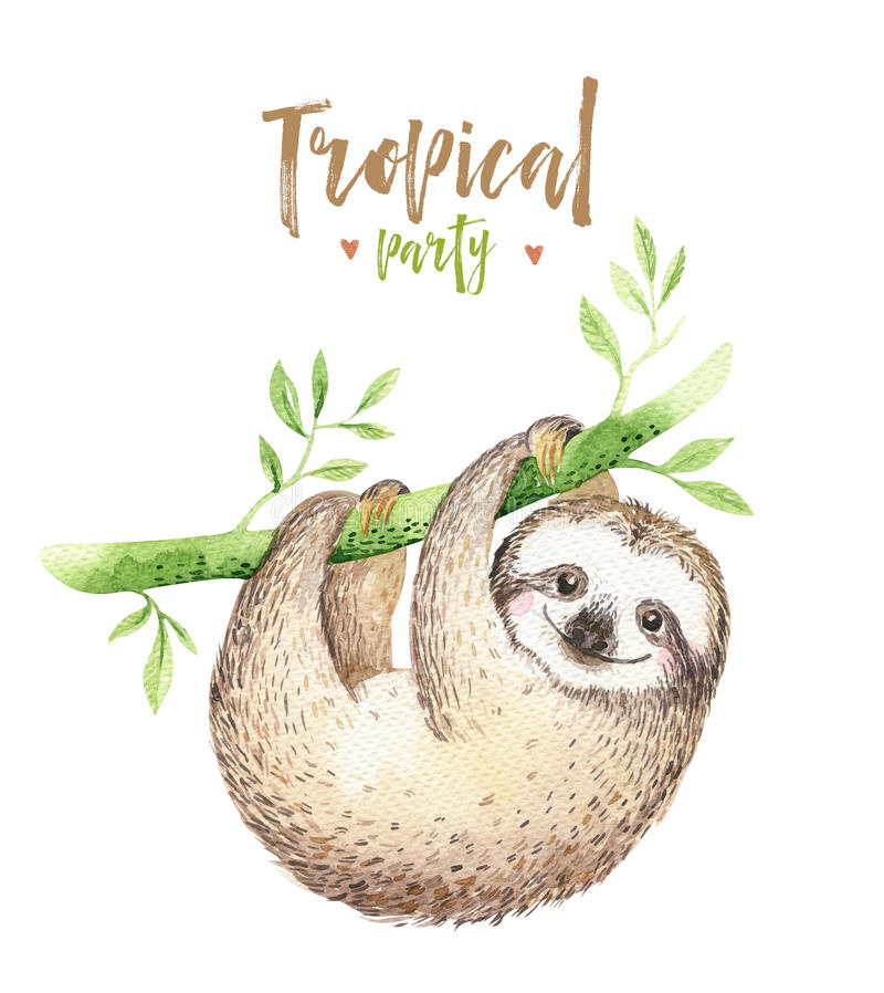 Peinture d'isolement par crèche de paresse d'animaux de bébé Dessin tropical de boho d'aquarelle, illustration tropicale d'enfant illustration de vecteur