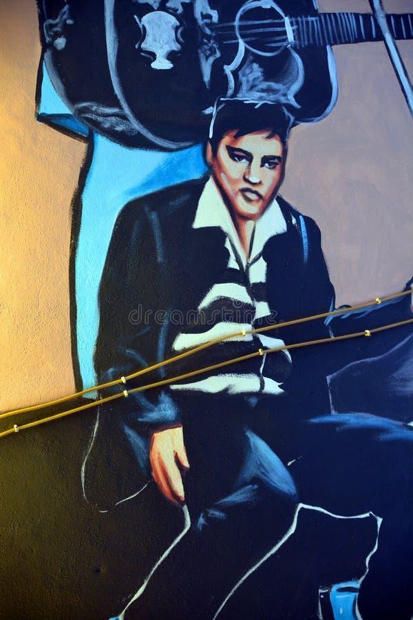 Peinture murale d'Elvis image stock