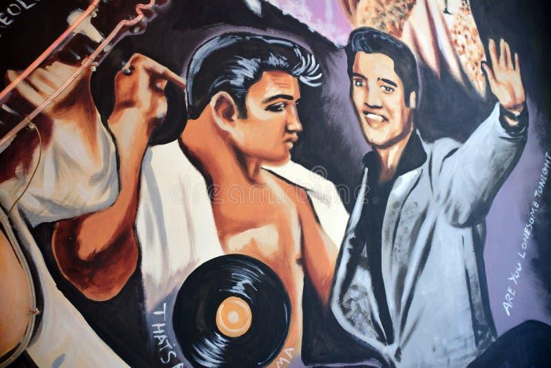Peinture murale d'Elvis images libres de droits