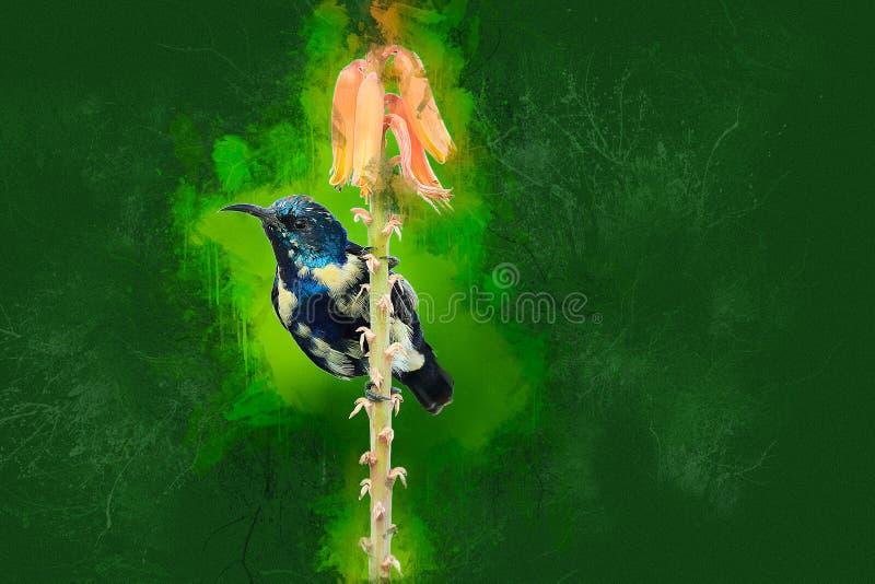 Peinture numérique de la faune de l'Aloe Vera photographie stock