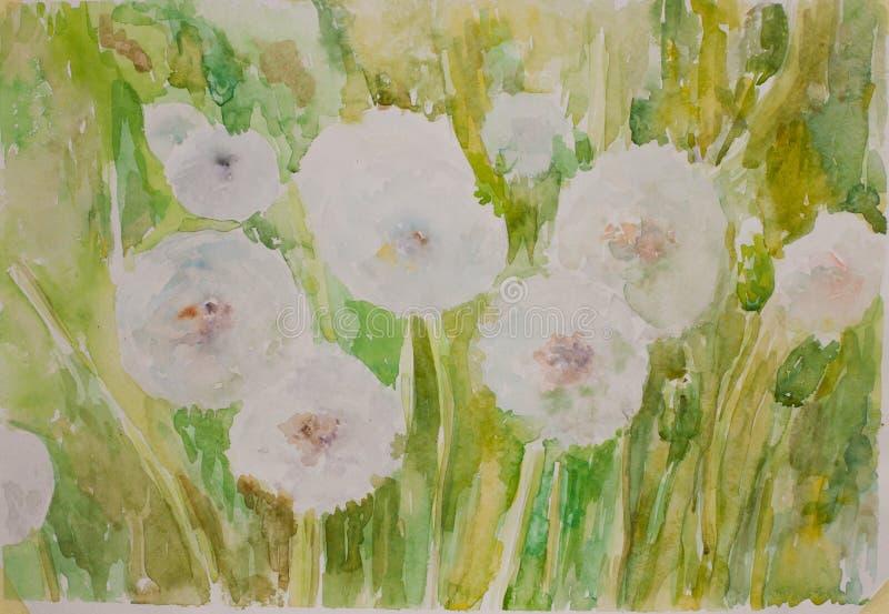 Peinture pelucheuse d'artiste de pissenlit Peinture pour aquarelle verte tirée par la main illustration stock