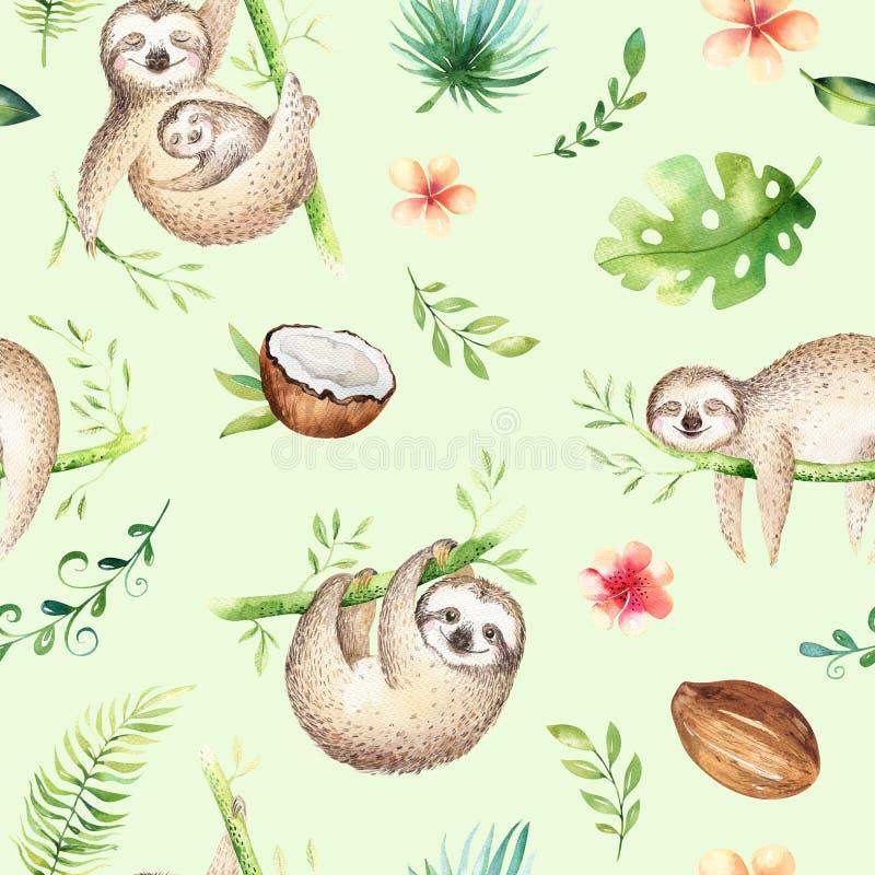 Peinture sans couture de modèle de crèche de paresse d'animaux de bébé Dessin tropical de boho d'aquarelle, dessin tropical d'enf illustration de vecteur