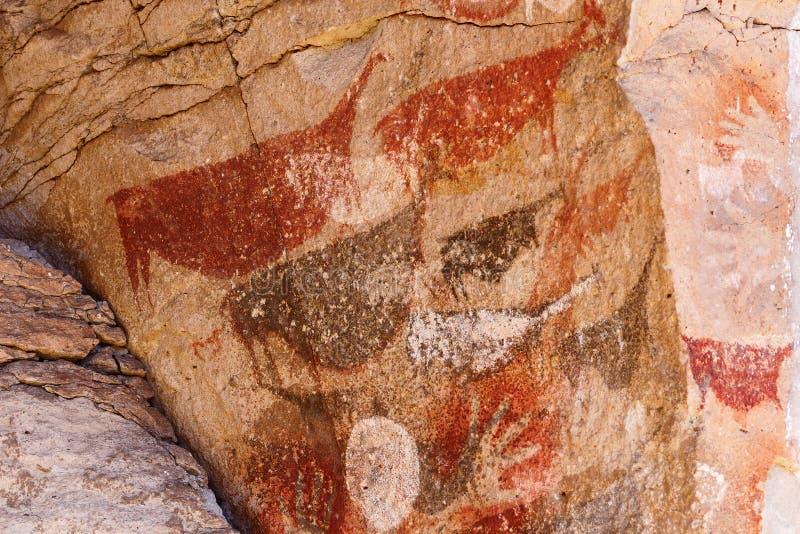 Peintures de Guanaco enceintes, art antique de caverne de Patagonia, image libre de droits