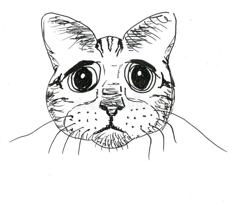 Peinzende kattensnuit op witte achtergrond, grafisch art. stock afbeelding