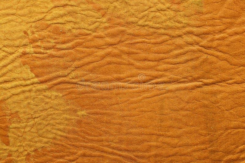 Peitschen Sie im natürlichen Farbton mit Flecken auf der Oberfläche aus stockbilder