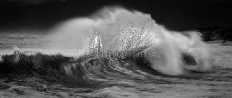 Peitschen von Wellen lizenzfreie stockfotos